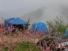 拉拉山長榮果園夫妻樹露營區