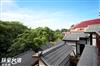 台南溪畔老樹山莊民宿