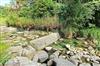 綠花園休閒民宿露營區