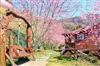 拉拉山楓墅農莊