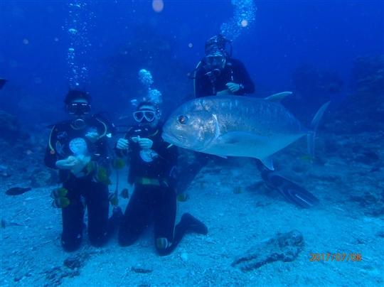 綠島潛水虎哥