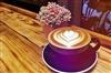 台中霧峰‧Coffee VA