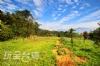 埔里水墻映月景觀露營區