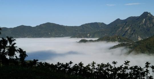有山倒影的雲海